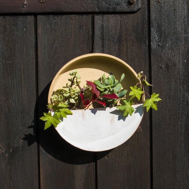 Wand-Blumentopf bepflanzt