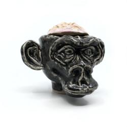 Handgefertigte Süßigkeiten Dose von der makaberen Sorte (Affe + Gehirn) - Frontansicht