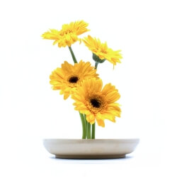 handgemachte Ikebana Vase mit Blumen
